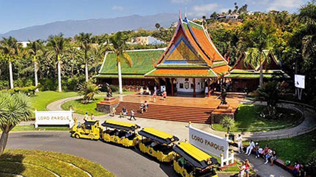 Loro Parque, en Tenerife