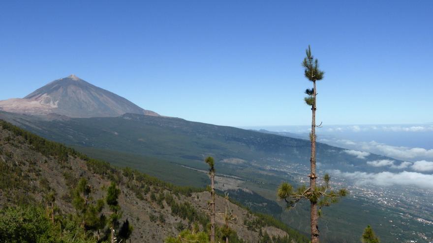 Vista del Teide y valle de La Orotava, en el norte de Tenerife