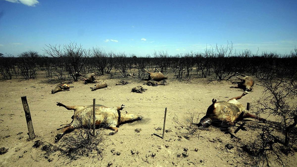 Para 2030, el calentamiento global podría superar en 1,5ºC los niveles preindustriales