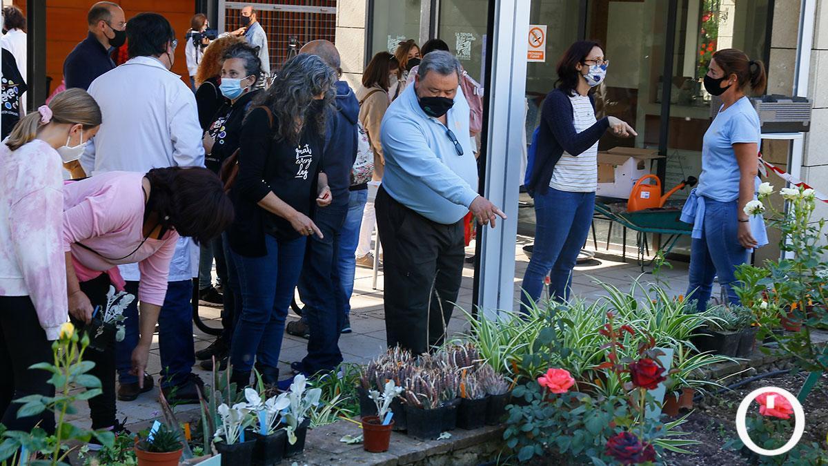 Éxito rotundo del primer mercado de trueque de plantas en Córdoba con más de 500 participantes