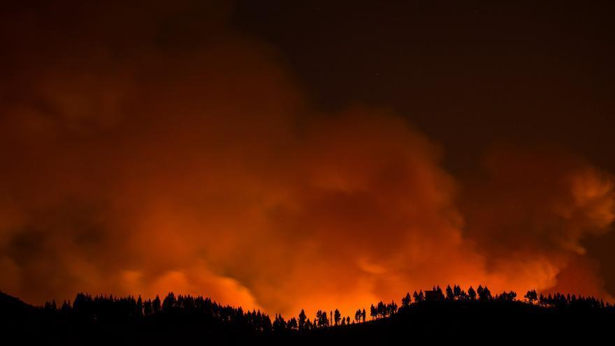 """El fuego en Gran Canaria presenta varias zonas de """"hombre muerto"""" o incontenibles y avanza sin control por la isla"""