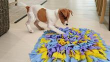 Cómo hacer una 'alfombra de olfato' para tu perro con tus viejas camisetas