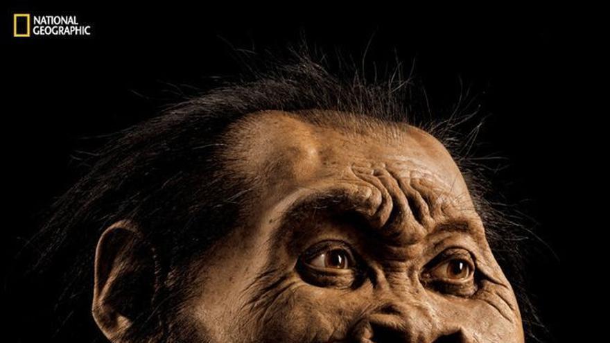 Cartel del 'Homo nadeli'.