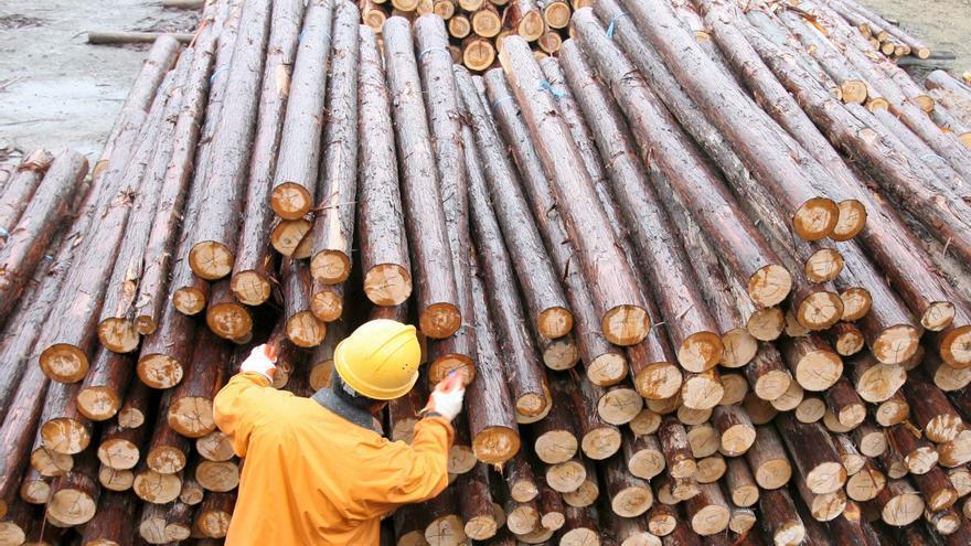 China se convierte en la tabla de salvación de la industria maderera
