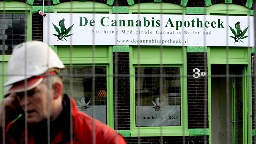 Las farmacias checas empiezan a vender cannabis con fines terapéuticos