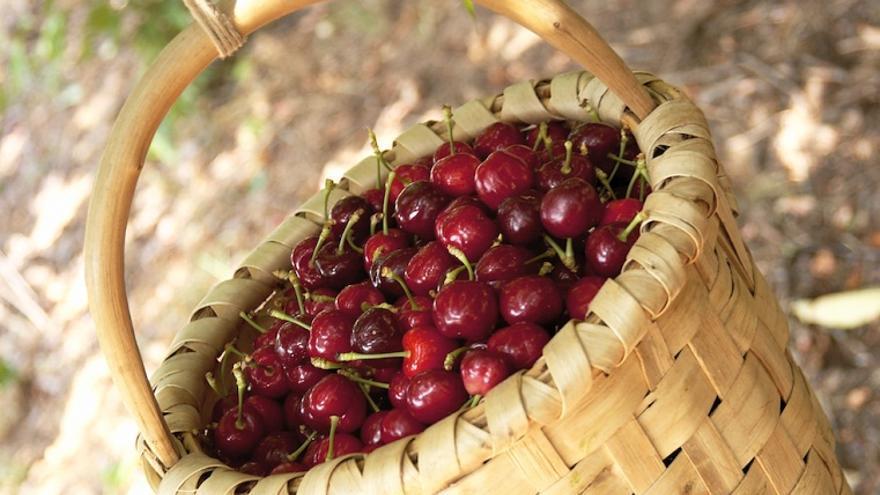 Los siete alimentos que te ayudarán a mantener a raya el ácido úrico