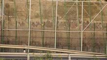 Unos 150 inmigrantes intentan sin éxito llegar a la valla de Melilla