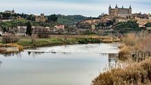 Hallado un cadáver en el río Tajo a su paso por Toledo
