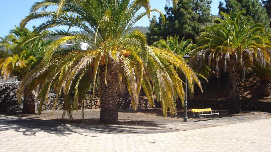Parque infantil Tajodeque de Tijarafe antes del inicio de su remodelación.