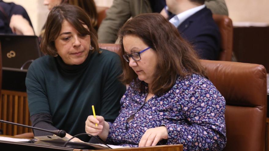 Junta de Portavoces apoya que la diputada no adscrita vaya solo a la comisión de desarrollo estatuario a propuesta de Cs