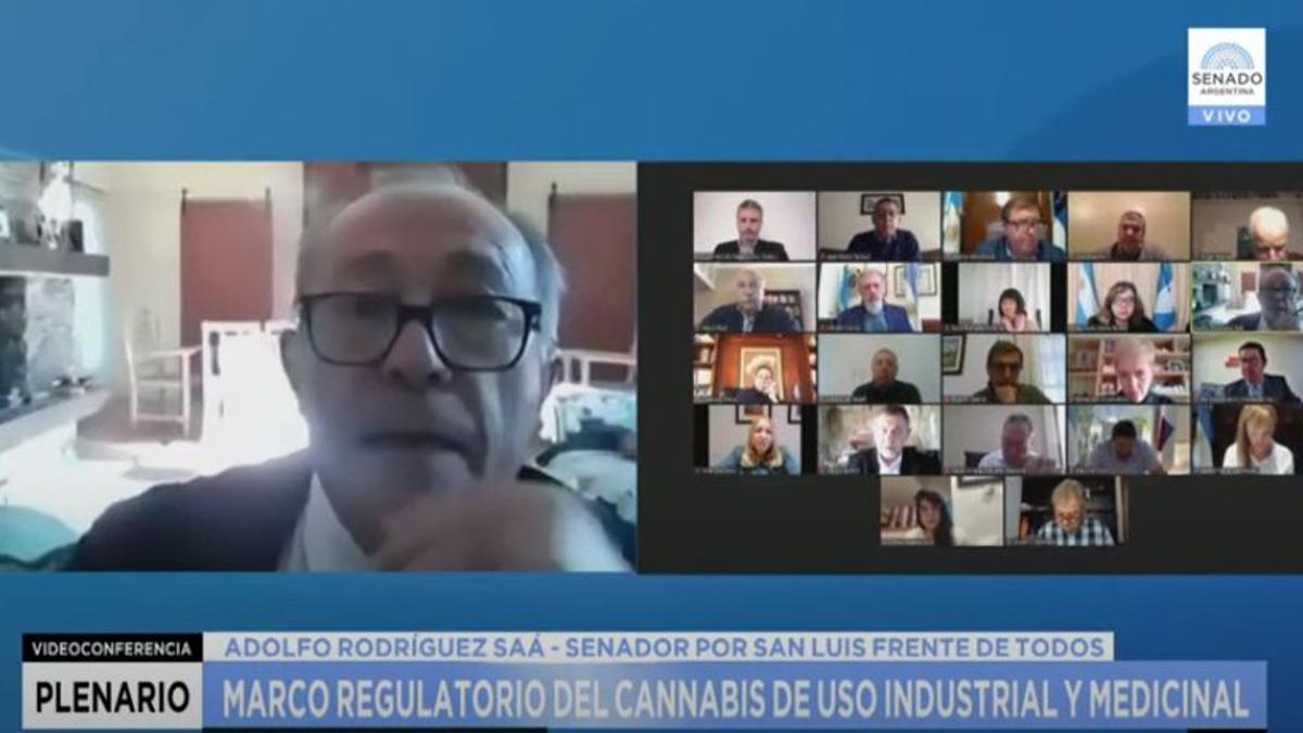 Adolfo Rodríguez Saá, titular de la comisión de Agricultura, Ganadería y Pesca del Senado, fue quien dirigió el debate.