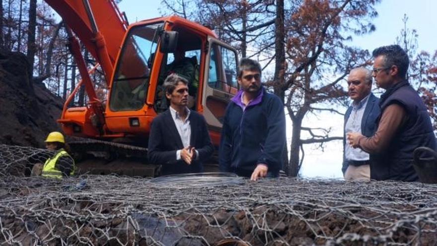 El delegado del Gobierno en Canarias, junto con el director insular de la Administración del Estado, ha visitado las obras de restauración forestal y medioambiental de las zonas afectadas por el incendio La Palma que está realizando el Gobierno de España.
