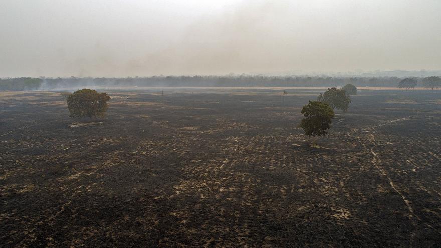Los incendios en la Amazonía brasileña se quintuplican en agosto