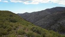 La sierra Calderona, afectada por el fuego