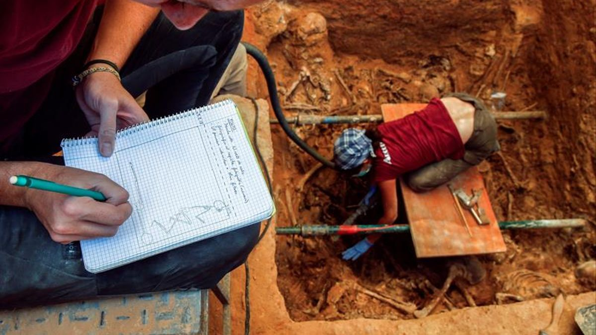 Trabajos de exhumación en una de las fosas del cementerio de Paterna.
