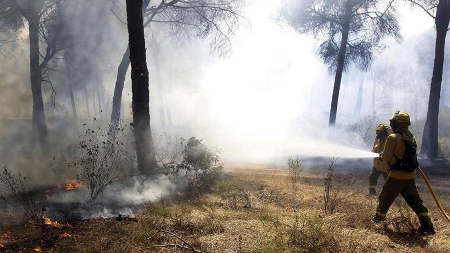 """Controlado el incendio forestal del paraje """"Las Cumbres"""" en Cartaya (Huelva)"""