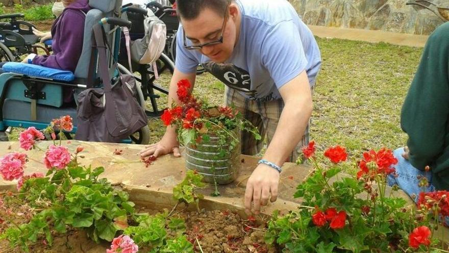 El Cabildo de Tenerife organiza dos campañas de 'crowdfunding' para la formación y el ocio de personas con discapacidad