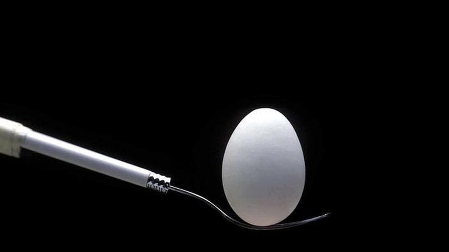 El huevo, más que un alimento