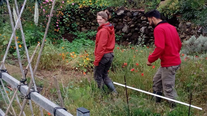 Voluntarios en la granja de Sabine. (R.C.I)