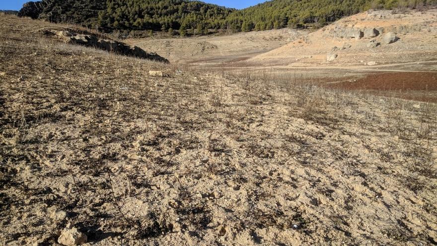 El Consejo Andaluz de Medio Ambiente analiza este jueves el decreto que declarará situación de sequía