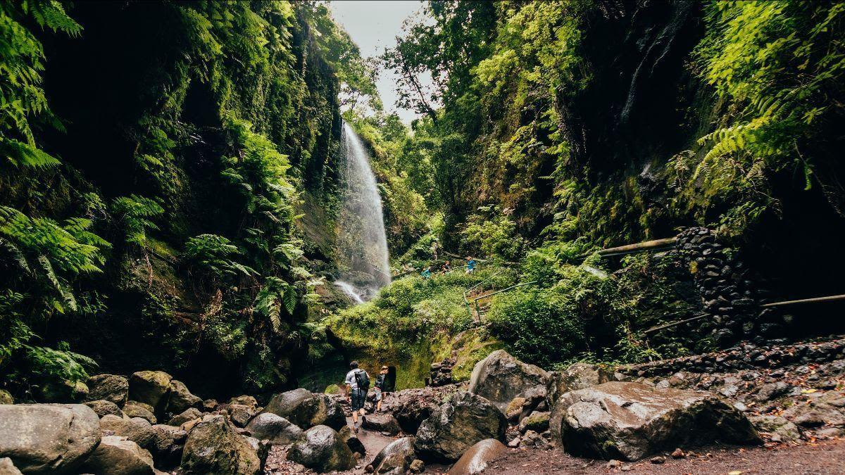 Imagen de archivo de la cascada de Los Tilos, en San Andrés y Sauces.