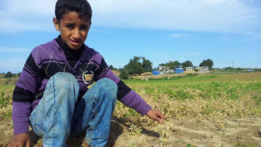 El hijo de Jaled nos muestra sus cultivos. Al fondo, su casa-choza / Foto: Isabel Pérez