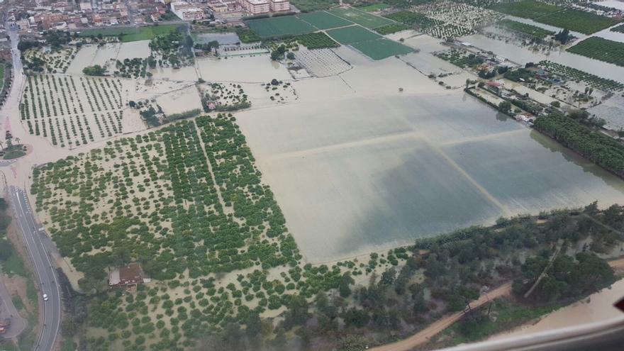 Imagen de la inundación de campos de cultivo en el Baix Segura