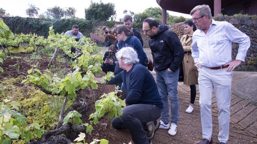 Integrantes de la misión comercial de EEUU a Canarias, donde han permanecido 10 días en contacto con la uva y el vino de calidad