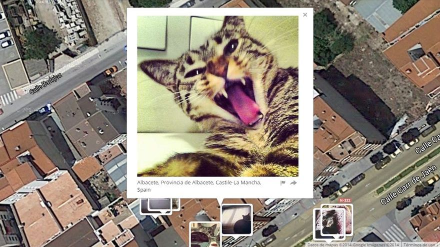 """El objetivo del creador de """"I know where you cat lives"""" es despertar un debate público en torno a la privacidad online"""