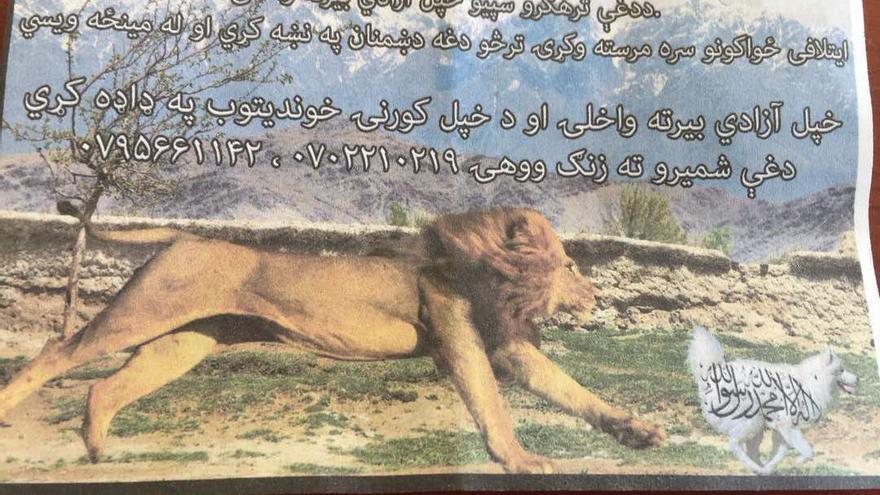 """""""Recupera tu libertad de los perros terroristas y coopera con las fuerzas de la coalición para que puedan identificar y eliminar a tu enemigo"""", rezaba el folleto"""