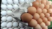 Alerta alimentaria en Holanda por huevos contaminados con un pesticida tóxico
