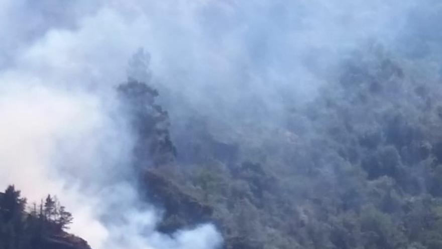 Incendio declarado en Valleseco, Gran Canaria
