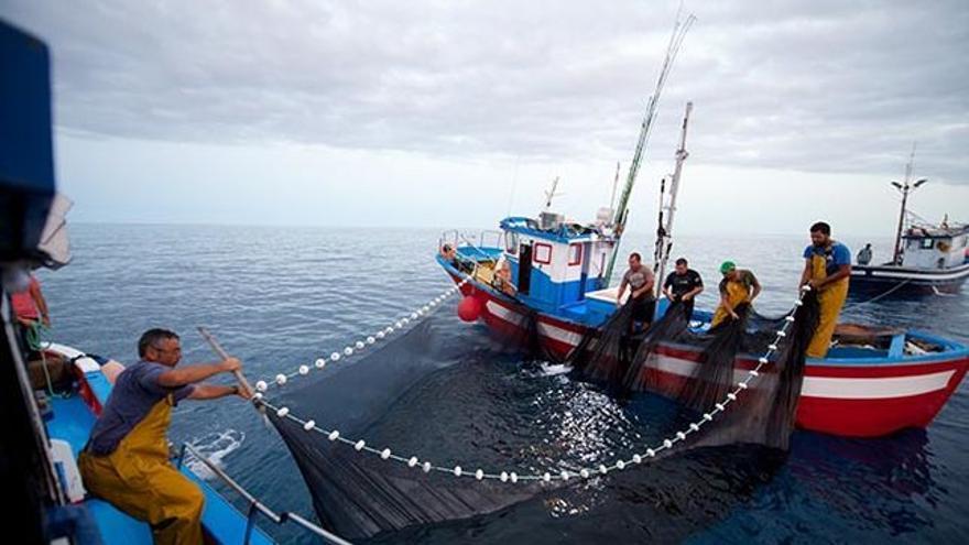 Pesca profesional El Hierro