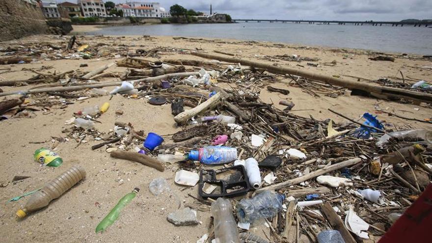 Expertos afirman que el Caribe de Panamá y de Colombia está plagado de microplásticos