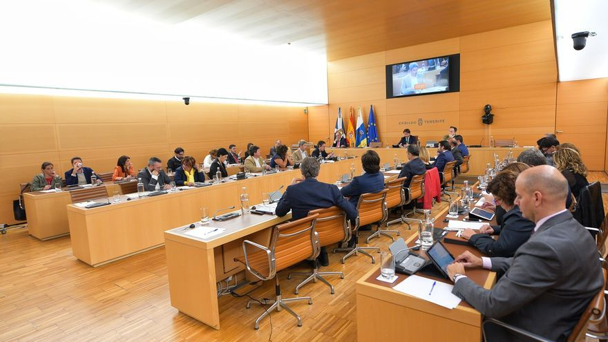 Pleno extraordinario convocado este martes para analizar las inversiones de AENA en el aeródromo Tenerife Sur