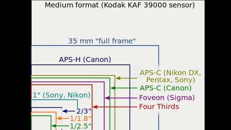 Gráfico que muestra el tamaño de los diferentes modelos de sensores fotográficos