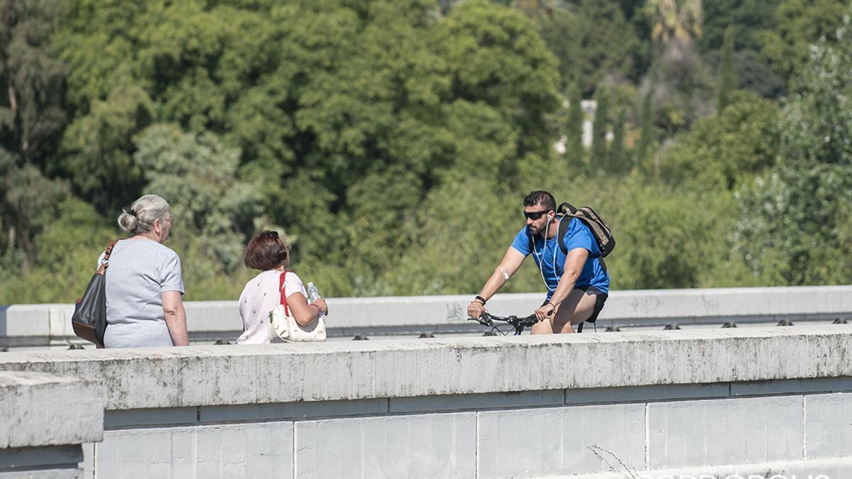 Ciclistas y peatones en el puente de San Rafael