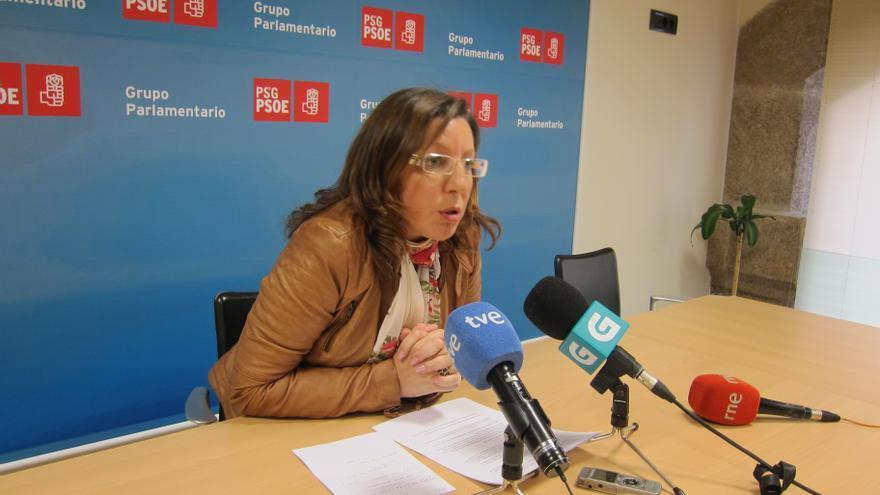 El PSdeG apremia a la Xunta a presentar el recurso de casación contra la sentencia
