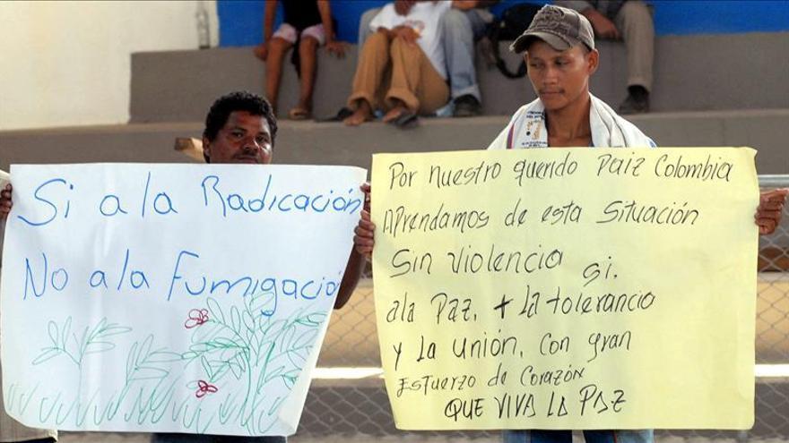 El ministro de Justicia colombiano defiende los métodos alternativos al glifosato