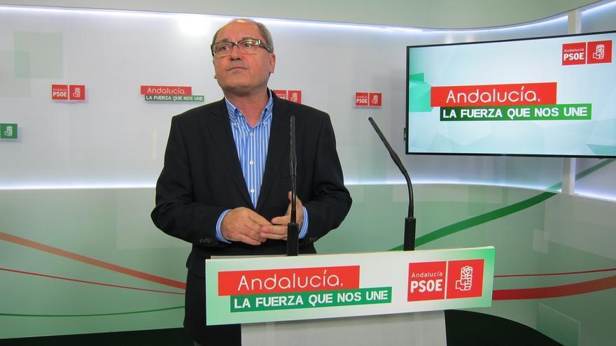 PSOE llevará en su programa leyes incluidas en el acuerdo de gobierno con IULV