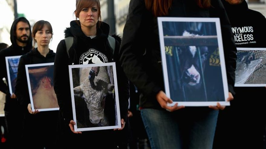 Activistas protestan contra la explotación animal en la industria cárnica