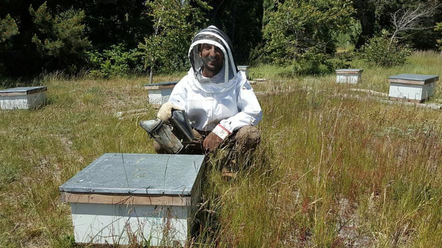 El investigador Lucas Garibaldi trabajando con abejas.
