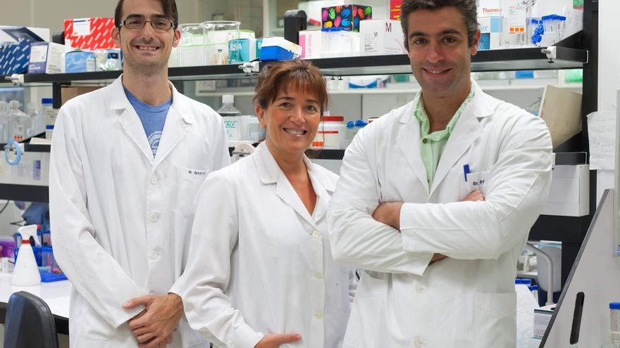 Científicos del CIMA diseñan nuevas moléculas contra el melanoma