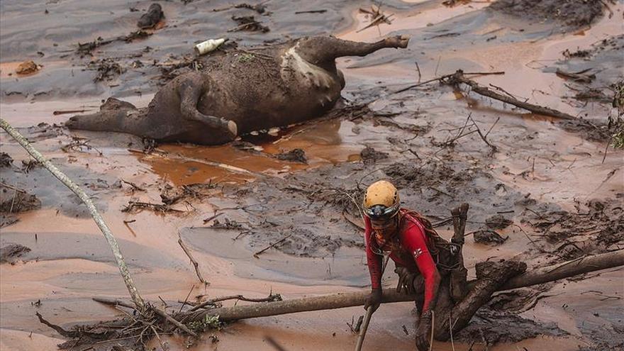 Refuerzan un dique del complejo minero que originó riada de lodo en Brasil