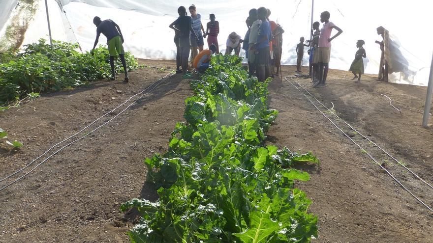 Andoain (Gipuzkoa) ayuda al sostenimiento de una escuela de educación primaria en Kenia