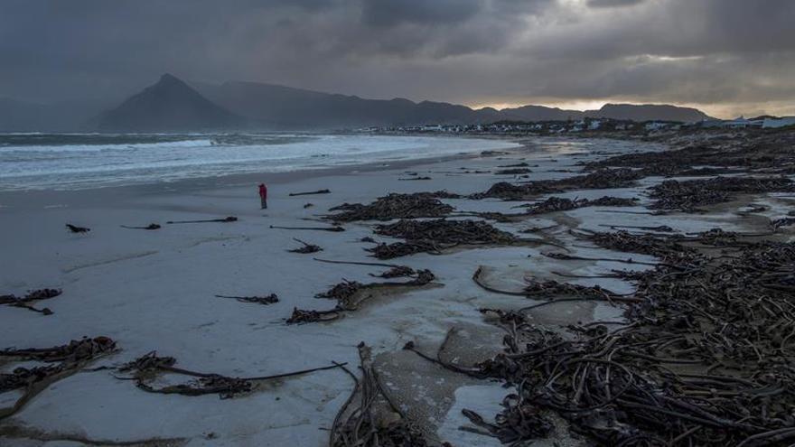 Sube a 9 el número de muertos por la tormenta que azota el Cabo sudafricano