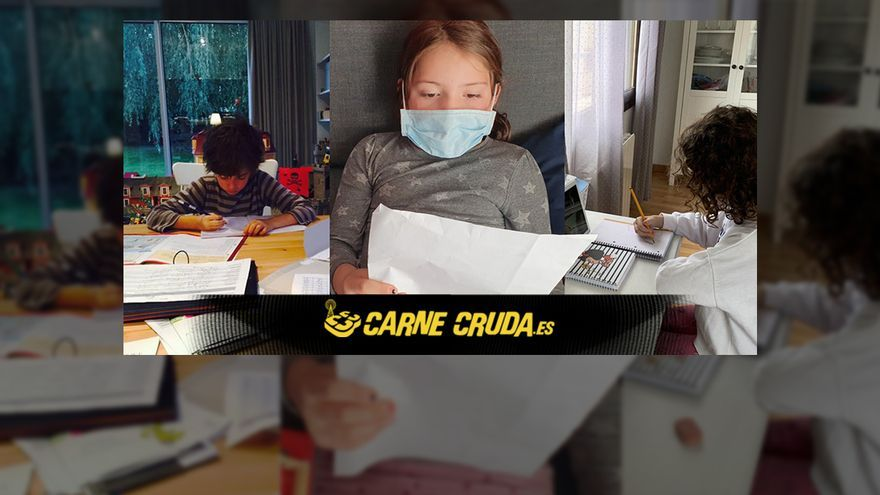 CC 669 cintillo posts previa web GRANDE T5 Paz.jpg
