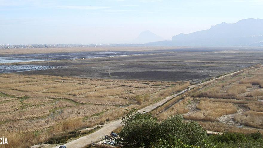 El Marjal de Pego-Oliva, en una imagen desde la Muntanyeta Verda