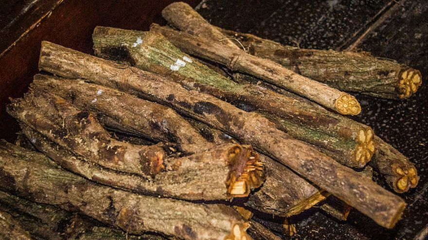 Los tallos de la ayahuasca permitan la absorción de la DMT