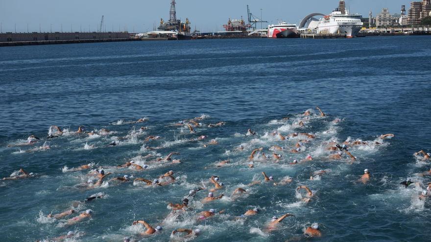 Grupo de nadadores en la dársena de Anaga, este sábado en la capital tinerfeña